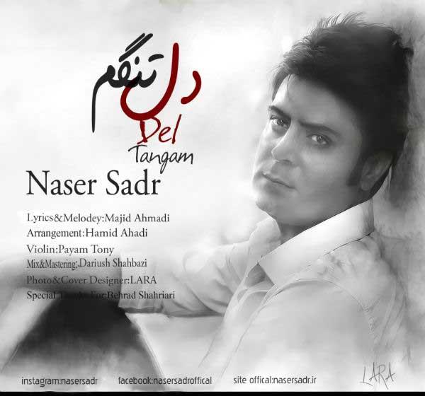 ناصر صدر آهنگ دلتنگم