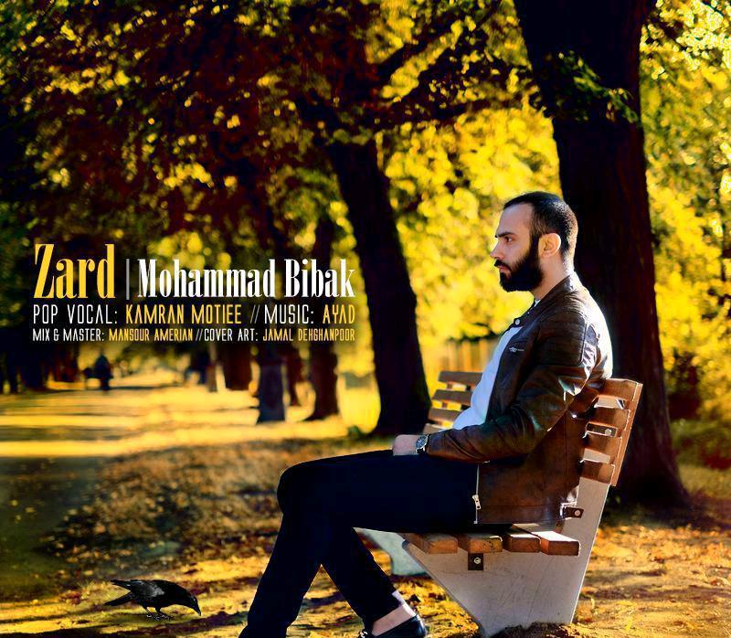 دانلود آهنگ جدید محمد بی باک به نام زرد